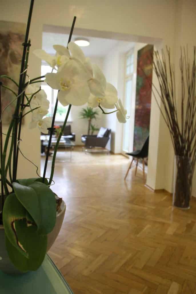 Orchidee im Wartezimmer der Dental Praxisklinik